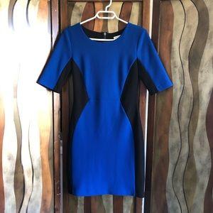 Bisou Bisou black and blue form fitting dress